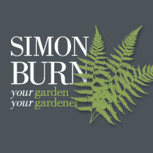Growing a new business: Simon Burn